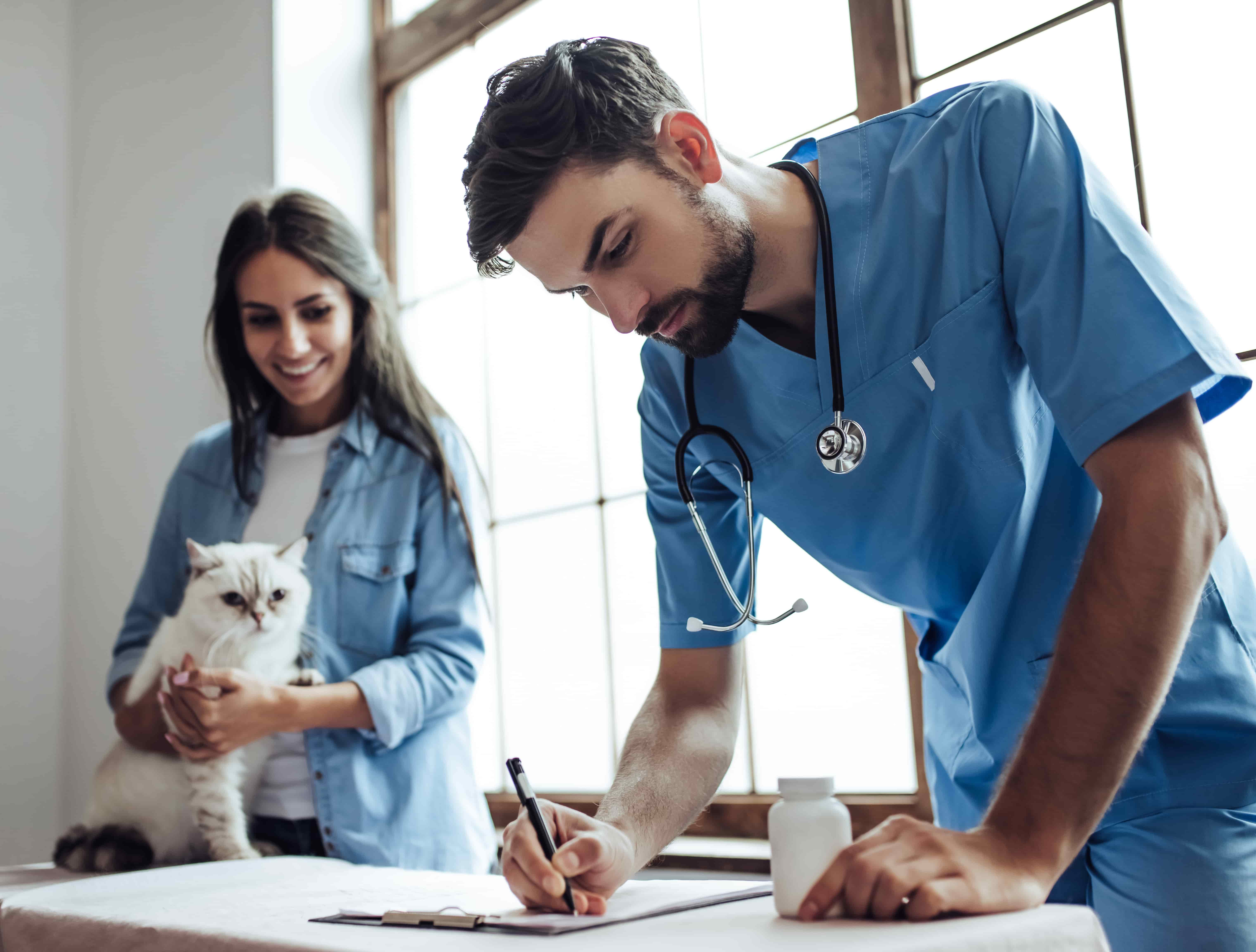What is a Preventive Care Plan For Pets?